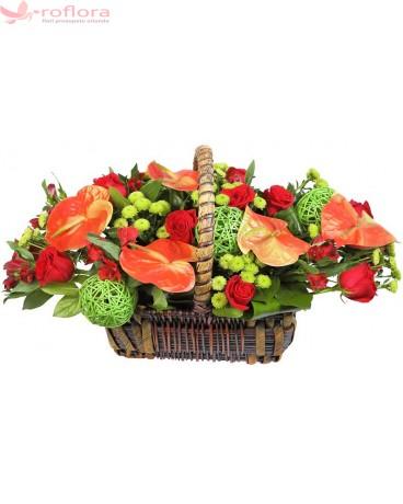Artistic - Cos cu minirosa, anthurium si crizanteme