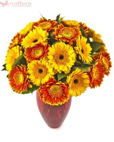 Flori luna octombrie