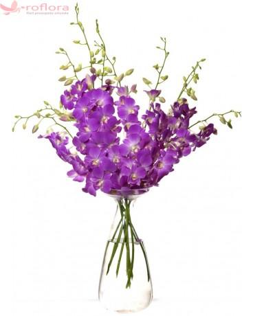 Opulent Violet Bouquet - Buchet din orhidee dendrobium