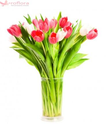 Perfect duo - Buchet de 17 lalele albe si rosii