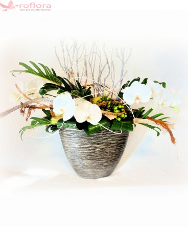 Phal Orchid - Aranjament din orhidee si hypericum