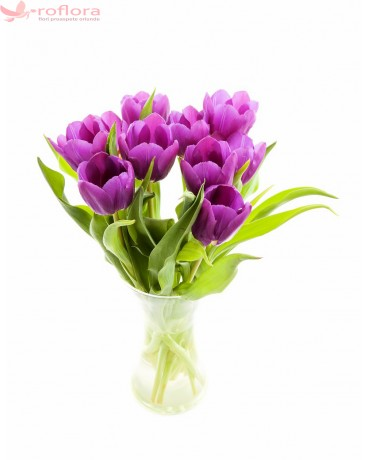 Purple Grace - Buchet de 9 lalele violet