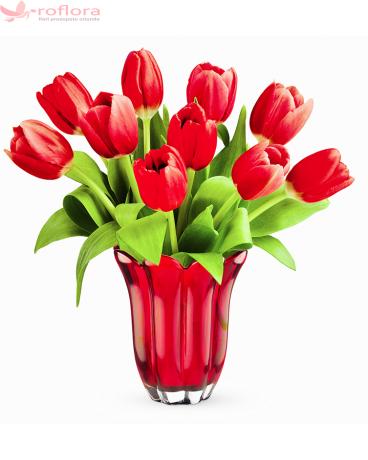 Red Grace - Buchet 11 lalele rosii