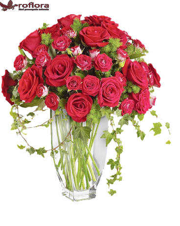 Trandafiri Regalis