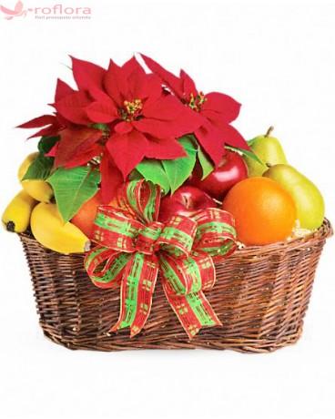 Sarbatoare - Cos cu fructe si poinsettia