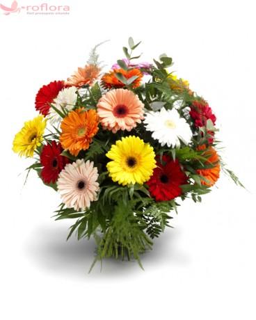 Florile lunii ianuarie
