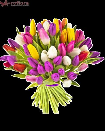 Veselie si culoare - Buchet de lalele multicolore