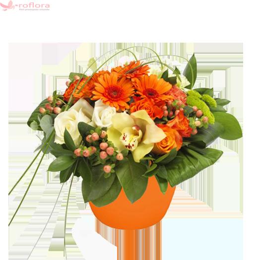 Sunrise Dream – Aranjament din orhidee, trandafiri, gerbera
