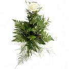 Hello – 1 trandafir alb