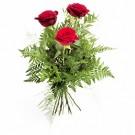 I Like You – Buchet din 3 trandafiri rosii