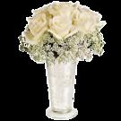 Splendoare in alb - Buchet cu 7 trandafiri albi si gypsophila