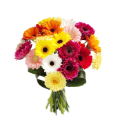 Colors of Joy –  Buchet din gerbera multicolora