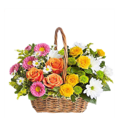 Curcubeu - Cos cu trandafiri si crizanteme