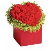 Joyful heart - Inima din garoafe rosii