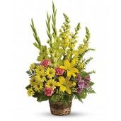 Raze de Soare - Cos cu gladiole, crini, alstroemeria si crizanteme