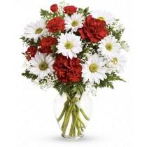 Ambiance - Buchet garoafe si garofite rosii, gypsophila, crizanteme