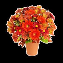 Fall Deluxe - Buchet din gerbere, crizanteme si alstroemeria