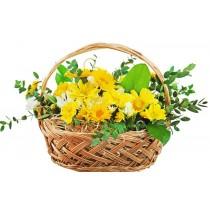Garden - Cos cu crizanteme