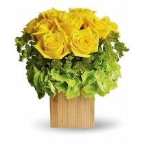 Gold as the Sun - Aranjament cu 9 trandafiri galbeni