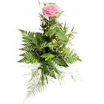 Sweet – 1 trandafir roz
