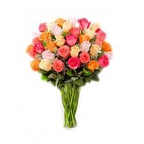 Veselie Pura – Buchet din 33 trandafiri multicolori