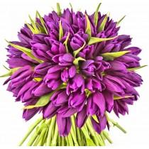 Violet Bloom - Buchet de lalele violet