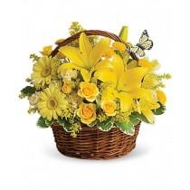 Yellow wishes - Cos din crini, minirosa, gerbera si alstroemeria