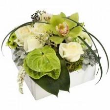 Contemporary - Aranjament din trandafiri, orhidee si anthurium