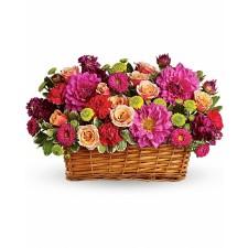 Gradina de Demult – Cos cu trandafiri si crizanteme