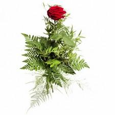 Kiss – 1 trandafir rosu