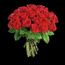 Pure velvet love Deluxe - Buchet de 23 trandafiri rosii