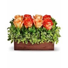 Harmony – Aranjament cu 8 trandafiri portocalii