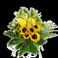 Intens – Buchet cu trandafiri si floarea soarelui
