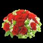 Valentino – Buchet cu 17 trandafiri rosii