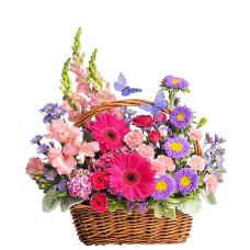 Country Basket - Cos cu gerbera, minirosa, garofite si alstroemeria