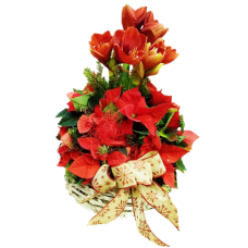 Merry Christmas - Aranjament cu poinsettia si amaryllis