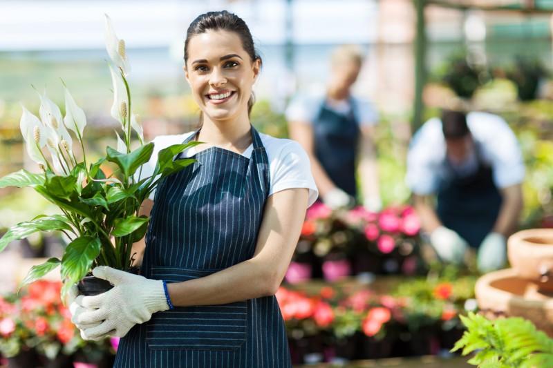 Roflora - florarie online - livram flori proaspete oriunde